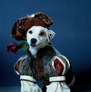 Wishbone as Romeo